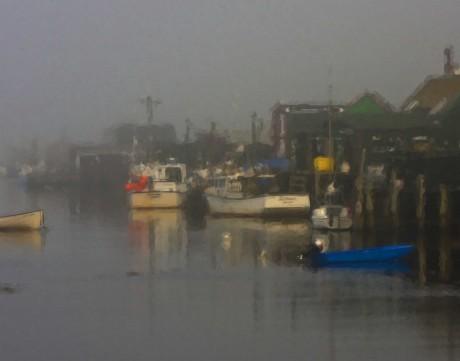 Shad Bay Fog