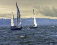 2011-0804-RunningDownwind-NuSky-11X14-ChalkBristleOils-CWR